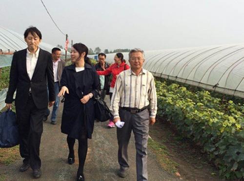 日本专家和沈阳葡萄专家到农场考察交流
