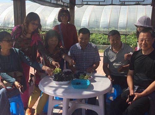日本千叶大学的专家和沈农的教授在农场考查